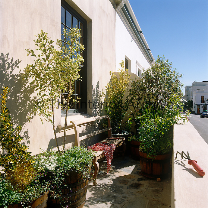 A rustic garden bench is situated under a window on the terrace of this house in Cape Town