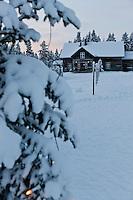Europe/Finlande/Laponie/ Env de Levi: Levin Lapinkylä est une ferme traditionnelle le long de la Ounasjoki -C'est:La ferme des rennes