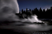 Castle Geyser erupts during evening at the Upper Geyser Basin at Yellowstone National Park