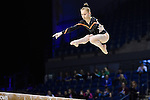 Ellesse Oates. British Championships, Junior All- Around, 2016.