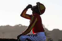 Rafael Bejarano aboard Executiveprivilege winner of the Del Mar Debutante at Del Mar Race Course in Del Mar, California on September 1, 2012.