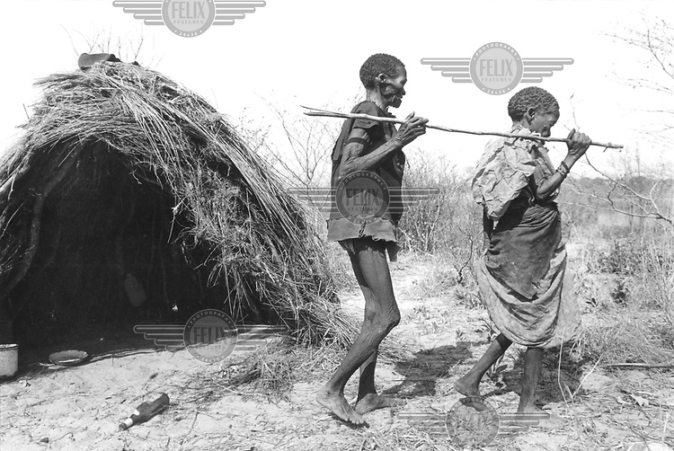 © Paul Weinberg / Panos Pictures..Kavango, Bushmanland, NAMIBIA..An elderly, blind San Bushman is led by his wife using a stick to guide him.