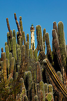 Aruba's California Lighthouse, located near the California Sand Dunes and Arashi Beach along the northern coast of Aruba. Aruba remains a popular tourist destination, with international planes and cruise ships arriving daily. Aruba, part of the Lesser Antilles, is famous for its white sand beaches, blue/green waters and mild climate.