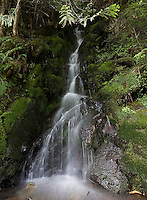 Photo by Stephen Brashear.A waterfall spills near the edge of the John Wayne Pioneer Trail between Hyak, Wash., and Rattlesnake Lake near North Bend, Wash., Sunday Aug. 17, 2008.