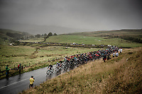 peloton up the Kidstones Climb<br /> <br /> Elite Men Road Race from Leeds to Harrogate (shortened to 262km)<br /> 2019 UCI Road World Championships Yorkshire (GBR)<br /> <br /> ©kramon