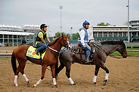 LOUISVILLE, KENTUCKY - APRIL 30: Hence, owned by Calumet Farm, is led to the track by trainer Steve Asmussen, before exercising in preparation for in preparation for the Kentucky Derby at Churchill Downs on April 30, 2017 in Louisville, Kentucky. (Photo by Jon Durr/Eclipse Sportswire/Getty Images)