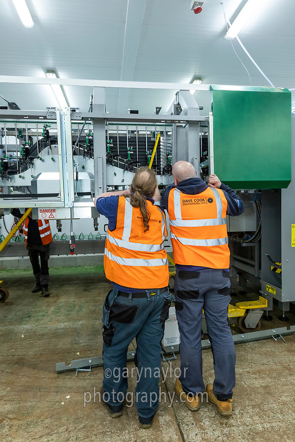 Installing a new flower processing line - Lincolnshire, February