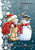John, CHRISTMAS ANIMALS, WEIHNACHTEN TIERE, NAVIDAD ANIMALES, paintings+++++,GBHSSXC50-1000B,#XA#