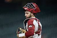 Arkansas Razorbacks catcher Casey Opitz (12) looks at his dugout during the game against the Baylor Bears in game nine of the 2020 Shriners Hospitals for Children College Classic at Minute Maid Park on March 1, 2020 in Houston, Texas. The Bears defeated the Razorbacks 3-2. (Brian Westerholt/Four Seam Images)