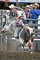20 Aug 2014: Elliot Jacoby riding the bull Silver Tongue De GG was not able to score during the second round  round of the Seminole Hard Rock Extreme Bulls competition at the Kitsap County Stampede in Bremerton, Washington.