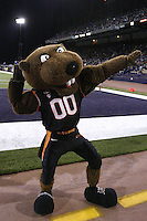 Oct 16, 20010:  The Oregon State Mascot Benny was on hand during the game against Washington.  Washington defeated Oregon State 35-35 in double overtime at Husky Stadium in Seattle, Washington...