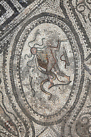 Roman mosaic of Hercules slaying the 9-headed Lernaean Hydra, his second labour, from the Labours of Hercules mosaic in the House of the Labours of Hercules, 1st century AD, Volubilis, Northern Morocco. Volubilis was founded in the 3rd century BC by the Phoenicians and was a Roman settlement from the 1st century AD. Volubilis was a thriving Roman olive growing town until 280 AD and was settled until the 11th century. The buildings were largely destroyed by an earthquake in the 18th century and have since been excavated and partly restored. Volubilis was listed as a UNESCO World Heritage Site in 1997. Picture by Manuel Cohen