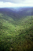 View over mountainous rainforest; border between Brazil Guyana.