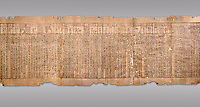 Ancient Egyptian Book of the Dead papyrus - Spell 51 for not walking upside down in gods domain, Iufankh's Book of the Dead, Ptolomaic period (332-30BC).Turin Egyptian Museum. Grey Background<br /> <br /> The translation of  Iuefankh's Book of the Dead papyrus by Richard Lepsius marked a truning point in the studies of ancient Egyptian funereal studies.
