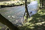 Dovedale, Peak District national park, Derbyshire, England
