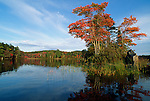 Fall view of Knights Pond, Northport, Maine, USA