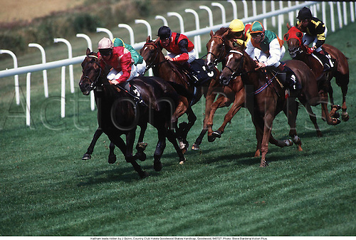 Haitham leads ridden by J Quinn, Country Club Hotels Goodwood Stakes Handicap, Goodwood, 940727. Photo: Steve Bardens/ Action Plus....1994.flat .equestrian sports