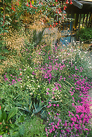 Mixed border with flowers and grasses weaving together; Roger Raiche Berkeley Maybeck Cottage garden