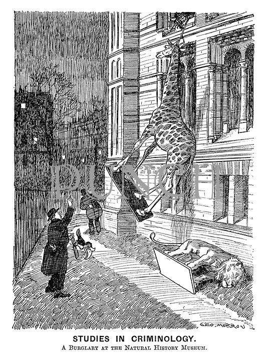 Studies in Criminology. A burglary at the Natural History Museum.