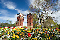 1922 entrance arch with tulips and pansies.(photo by Megan Bean / © Mississippi State University)