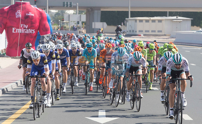 The peloton in full flight during Stage 2, the Nakheel Stage, of the 2016 Dubai Tour starting at the Dubai International Marine Club and running 188km to Palm Jumeirah Atlantis, Dubai, United Arab Emirates. 4th February 2016.<br /> Picture: ANSA/Claudio Peri | Newsfile<br /> <br /> <br /> All photos usage must carry mandatory copyright credit (&copy; Newsfile | Eoin Clarke)