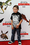 RAYMOND OCHOA. Arrivals to the Los Angeles premiere of Dreamworks' How To Train Your Dragon at the Gibson Amphitheater. Universal City, CA, USA. March 21, 2010.