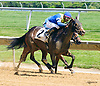 Sadie's Magic winning at Delaware Park on 6/11/16