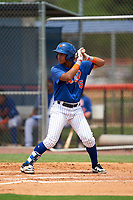 GCL Mets Endy Rodriguez (5) at bat during a Gulf Coast League game against the GCL Marlins on August 11, 2019 at St. Lucie Sports Complex in St. Lucie, Florida.  GCL Marlins defeated the GCL Mets 3-2 in the second game of a doubleheader.  (Mike Janes/Four Seam Images)