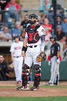 Billings Mustangs catcher Pabel Manzanero (64) on defense against the Missoula Osprey at Dehler Park on August 21, 2017 in Billings, Montana.  The Osprey defeated the Mustangs 10-4.  (Brian Westerholt/Four Seam Images)