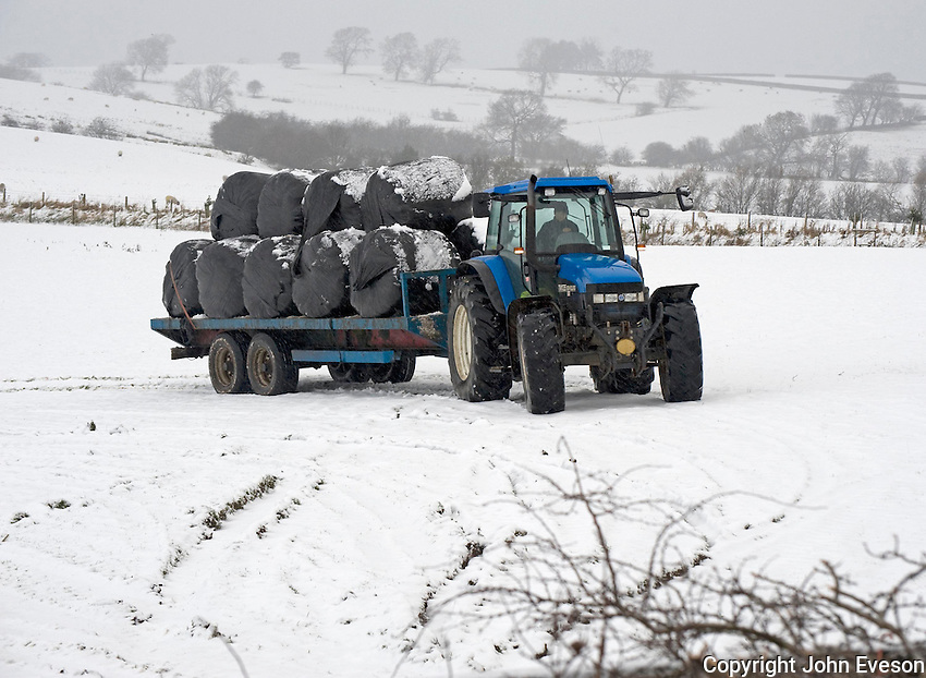 Transporting big bales of silage in the snow, Slaidburn, Lancashire....Copyright..John Eveson, Dinkling Green Farm, Whitewell, Clitheroe, Lancashire. BB7 3BN.01995 61280. 07973 482705.j.r.eveson@btinternet.com.www.johneveson.com