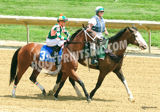 Keep Crossing before The Dashing Beauty Stakes at Delaware Park on 7/11/15