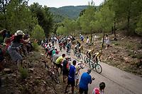 Team Jumbo-Visma leading the way for Primoz Roglic (SVK/Jumbo-Visma) up the steepest part of the brutal Mas de la Costa: the final climb towards the finish<br /> <br /> Stage 7: Onda to Mas de la Costa (183km)<br /> La Vuelta 2019<br /> <br /> ©kramon