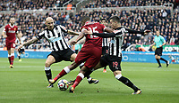 Liverpool's Daniel Sturridge vies for possession with  Newcastle United's Jonjo Shelvey (left) and Javi Manquillo<br /> <br /> Photographer Rich Linley/CameraSport<br /> <br /> The Premier League -  Newcastle United v Liverpool - Sunday 1st October 2017 - St James' Park - Newcastle<br /> <br /> World Copyright &copy; 2017 CameraSport. All rights reserved. 43 Linden Ave. Countesthorpe. Leicester. England. LE8 5PG - Tel: +44 (0) 116 277 4147 - admin@camerasport.com - www.camerasport.com