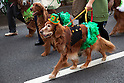 St. Patrick's Day Parade in Tokyo 2013