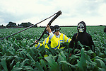 An anti GM protester dressed  as the grim reaper is arrested after cutting down a  field  of GM maize.