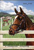 GIORDANO, REALISTIC ANIMALS, REALISTISCHE TIERE, ANIMALES REALISTICOS, paintings+++++,USGI2786,#A# horses,