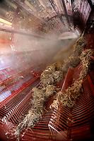 bioarchitettura, canapa, separazione del canapulo dalla fibra, Carmagnola, sede dell'Assocanapa