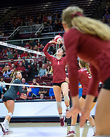 STANFORD, CA - November 3, 2018: Jenna Gray, Meghan McClure, Holly Campbell at Maples Pavilion. No. 1 Stanford Cardinal defeated No. 15 Colorado Buffaloes 3-2.