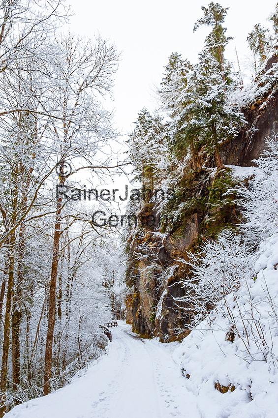 Deutschland, Bayern, Chiemgau, Bergsteigerdorf Schleching: unterwegs auf dem alten Schmugglerweg nach Koessen (Oesterreich) | Germany, Upper Bavaria, Chiemgau, mountaineer village Schleching: bootlegger trail leading to Koessen (Austria)