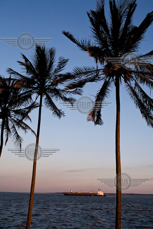 A ship seen through palm trees growing along the corniche in Maputo.