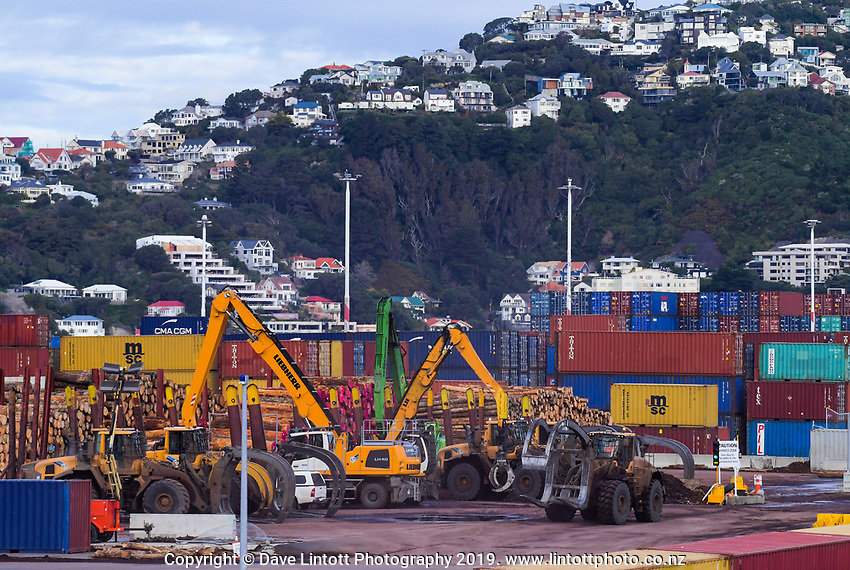 Centreport in Wellington, New Zealand on Thursday, 25 July 2019. Photo: Dave Lintott / lintottphoto.co.nz