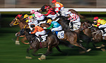 Horses compete in the Race 10, Maurice Handicap, during the Longines Hong Kong International Races at Sha Tin Racecourse on December 10 2017, in Hong Kong, Hong Kong. Photo by Victor Fraile / Power Sport Images