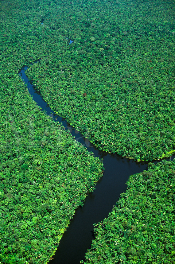 Aerial of river in tropical rain forest, Marajo Island, Para, Brazil.