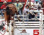 PRCA rookie cowboy Kane Gjermundson finds out how hard it is to fill his permit as he is sent airborn by the Harry Vold Rodeo Company bronc H33 in the Rookie Saddle Bronc event during final round action at the 112th annual Cheyenne Frontier Days Rodeo July 27, 2008 in Cheyenne, Wyoming. The Rookie Saddle Bronc competition at Cheyenne provides an opportunity for PRCA permit holders to earn money in an effort to fill their permits before becoming full members of the Professional Rodeo Cowboy Association.