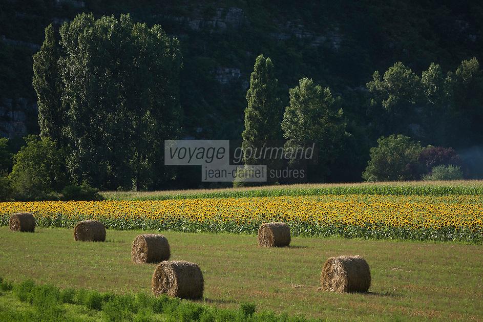 Europe/France/Midi-Pyrénées/46/Lot/env de Cajarc: Paysage de la Vallée du Lot
