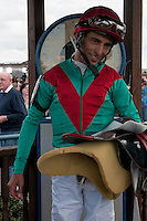 Went the Day Well with John Velazquez up and trained by Graham Motion ,win the G3 Vinery Spiral Stakes at Turfway Park in Florence, Kentucky Saturday March 24, 2012.