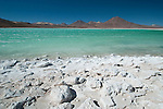 Laguna Verde with Borax mineral flats at the border of Bolivia/Chile, Reserva Nacional Eduardo Avaroa of Wildlife, Salar de Uyuni area