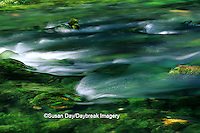 65045-00510 Blue Spring area Ozark National Scenic Riverways    MO