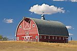 Red arch-roof barn with metal cupola ventilator with horse weather vane, white trim, 6-pointed star a