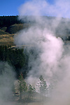 Steam rising from Sulfer Caldron, Mud Volcano area, Yellowstone National Park, WYOMING